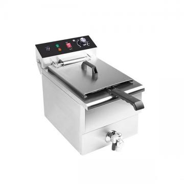 Two Tank Commercial Electric Open Fryer with Oil Filter