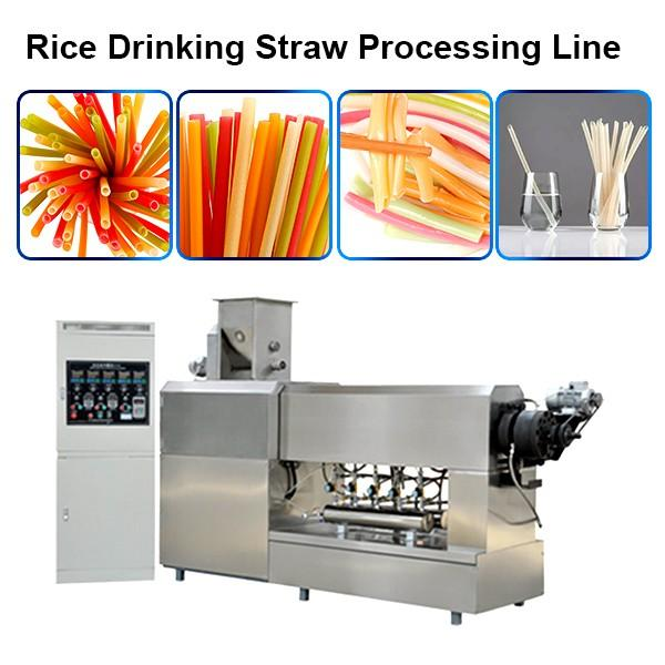 Single Screw Extruder Macaroni Pasta Degradable Drinking Straw Processing Line Making Machine #1 image