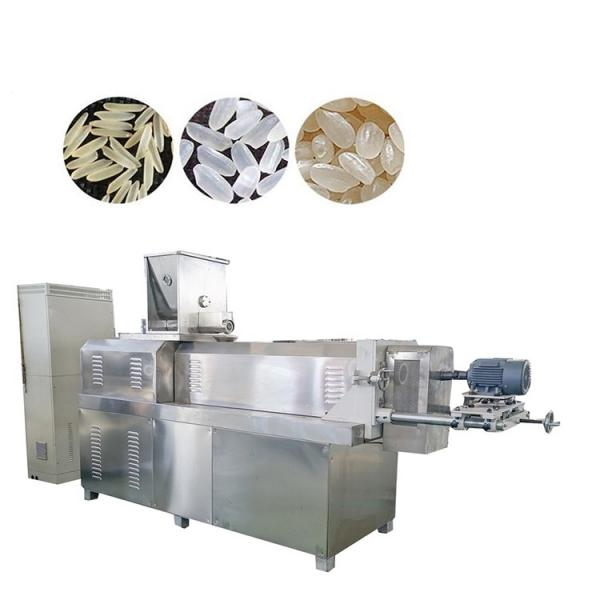 Automatic Nutritional Artificial Rice Double Screw Extruder Making Machine #1 image