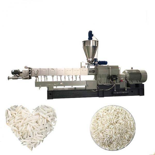 Enriched Reconstituted Nutrition Double Screw Artificial Rice Food Making Machine Processing Equipment Line #1 image