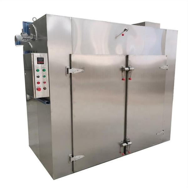 Hot Air Drying Chamber Type Fruit and Vegetable Dryer #1 image