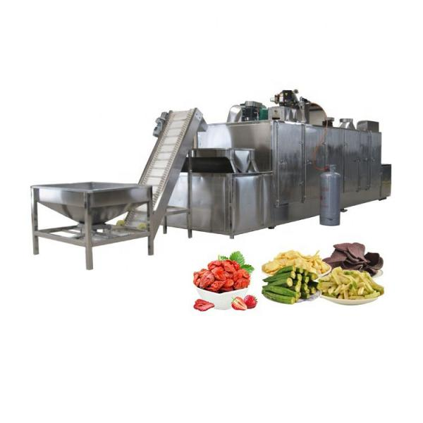 Industrial Pepper Vegetable Food Drying Machine/Vegetable Dehydrator Dryer Machine #1 image